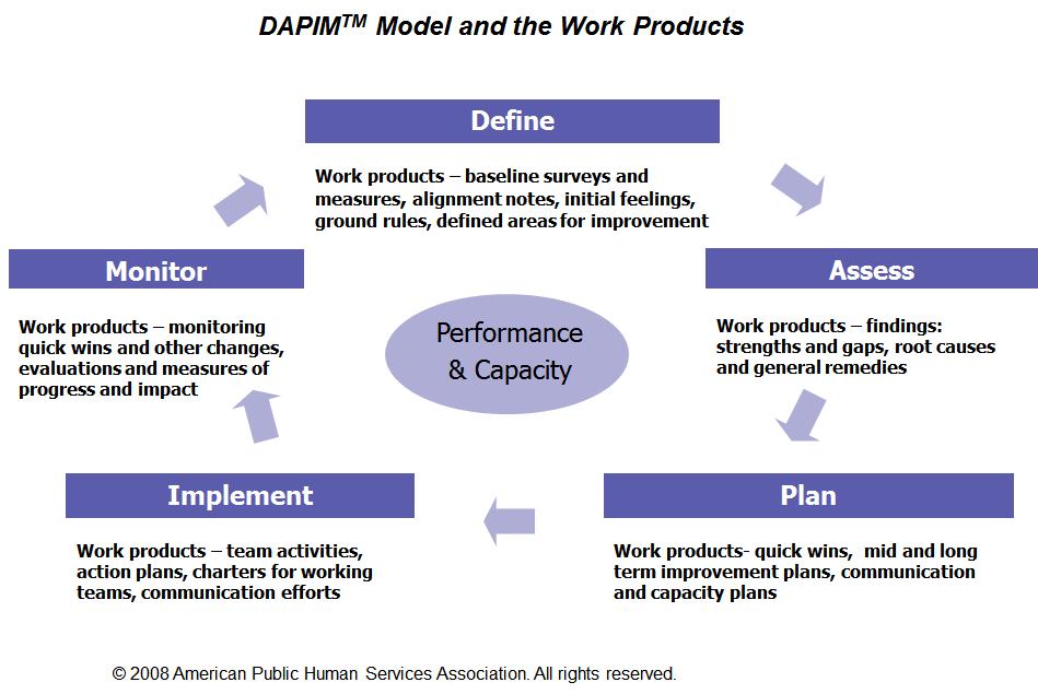 American Public Human Services Association's DAPIMTM model for continuous improvement.